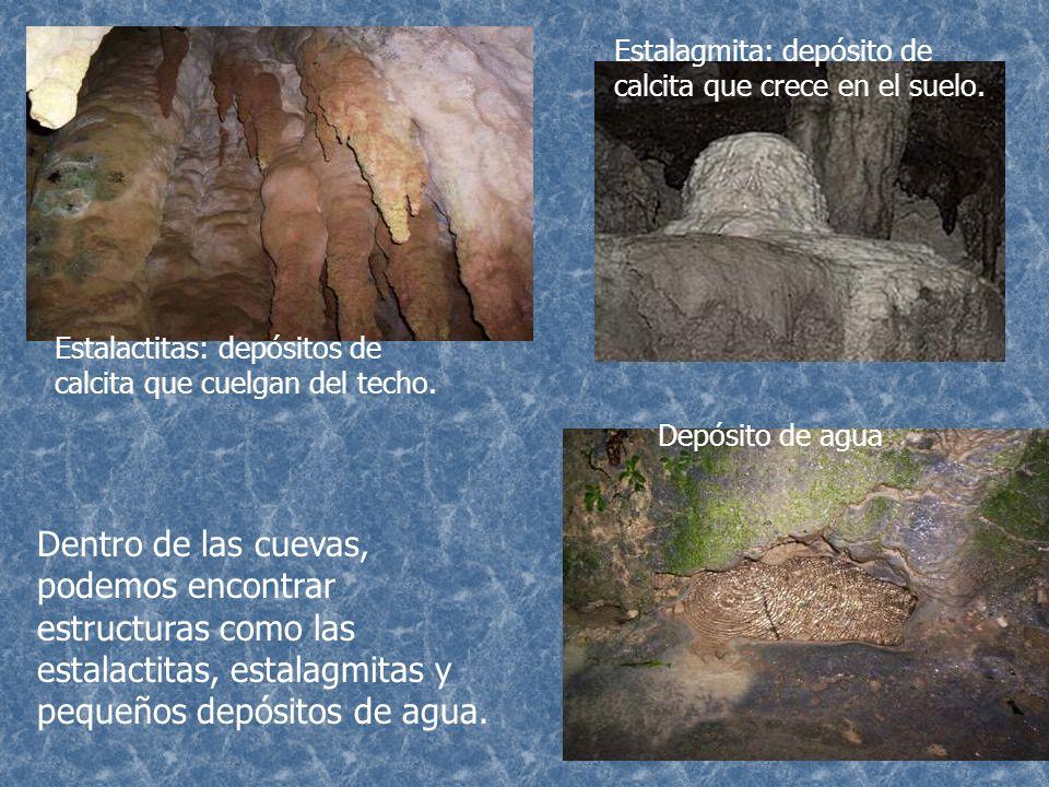 Estalagmita: depósito de calcita que crece en el suelo.