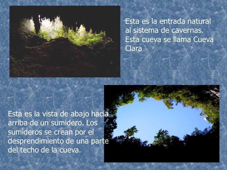 Esta es la entrada natural al sistema de cavernas
