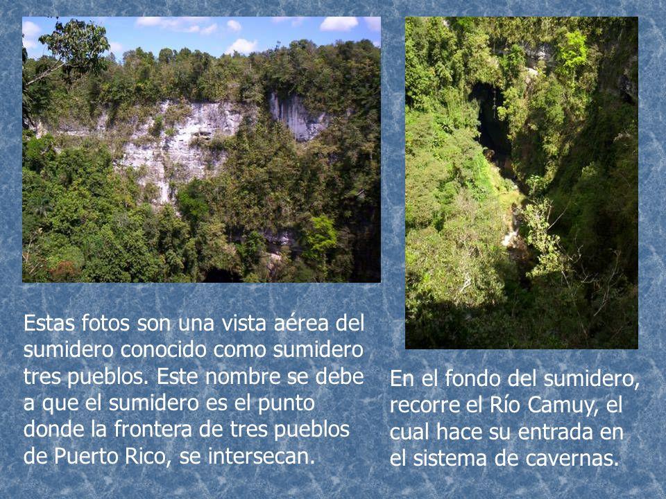 Estas fotos son una vista aérea del sumidero conocido como sumidero tres pueblos. Este nombre se debe a que el sumidero es el punto donde la frontera de tres pueblos de Puerto Rico, se intersecan.