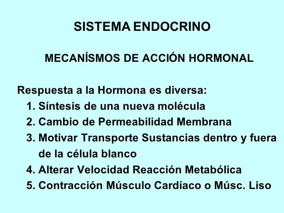 MECANÍSMOS DE ACCIÓN HORMONAL