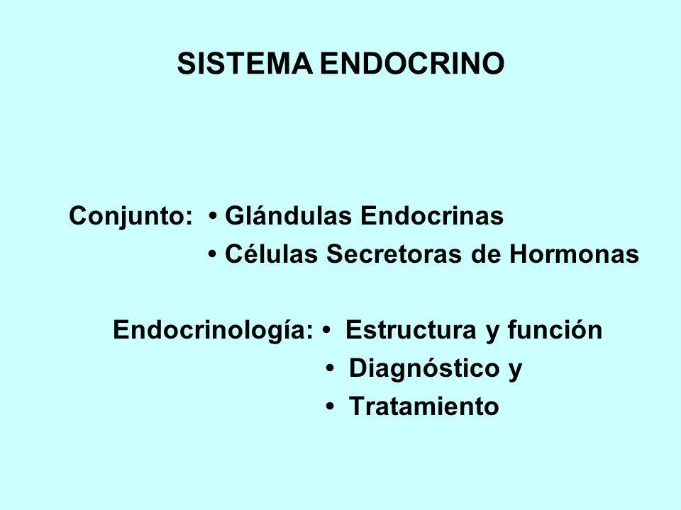 SISTEMA ENDOCRINO Conjunto: • Glándulas Endocrinas
