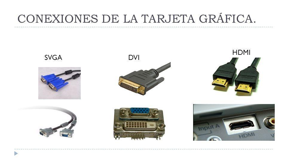 CONEXIONES DE LA TARJETA GRÁFICA.