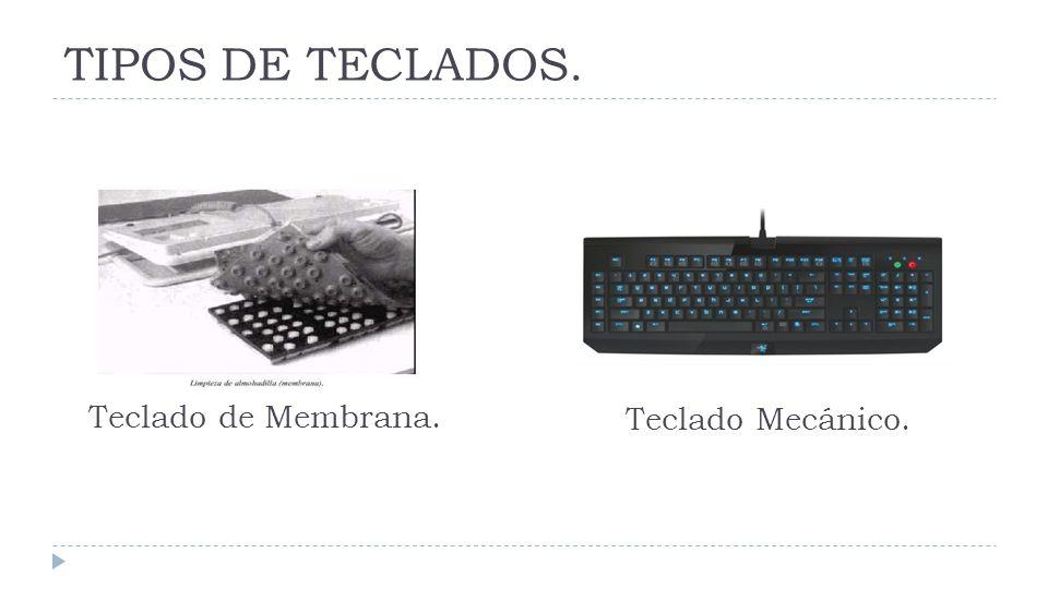 TIPOS DE TECLADOS. Teclado de Membrana. Teclado Mecánico.