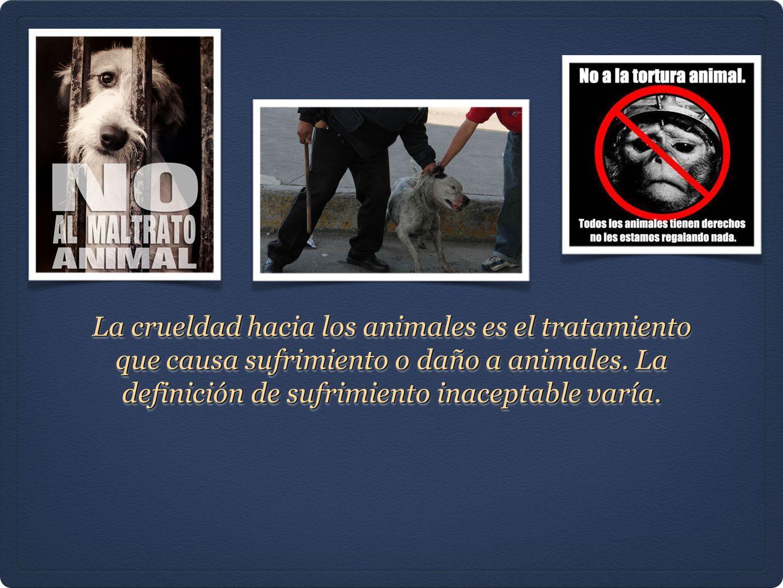 La crueldad hacia los animales es el tratamiento que causa sufrimiento o daño a animales.