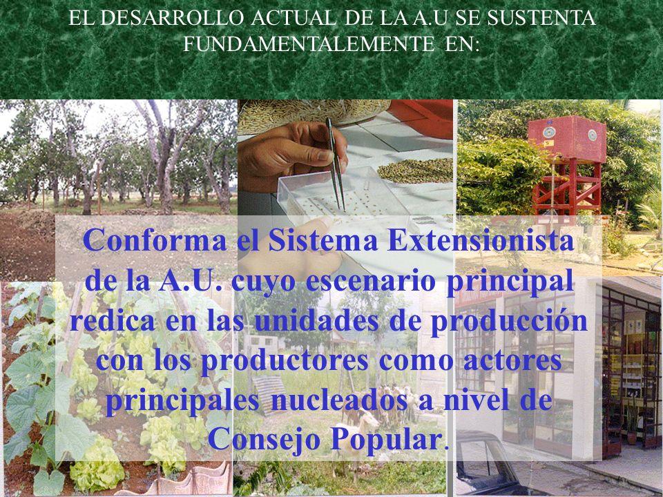 EL DESARROLLO ACTUAL DE LA A.U SE SUSTENTA FUNDAMENTALEMENTE EN: