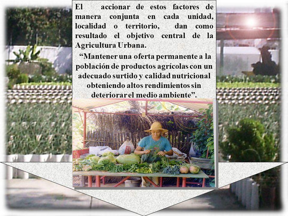 El accionar de estos factores de manera conjunta en cada unidad, localidad o territorio, dan como resultado el objetivo central de la Agricultura Urbana.