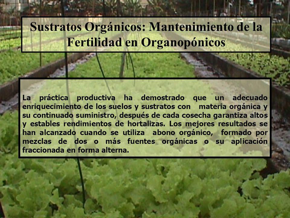 Sustratos Orgánicos: Mantenimiento de la Fertilidad en Organopónicos
