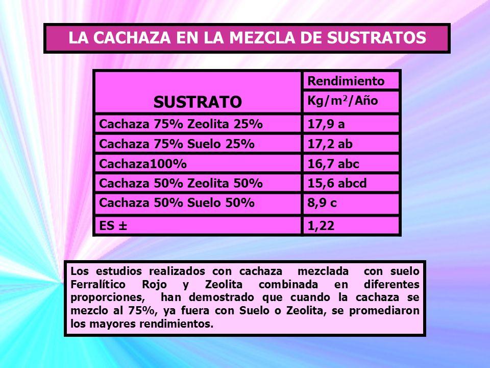 LA CACHAZA EN LA MEZCLA DE SUSTRATOS