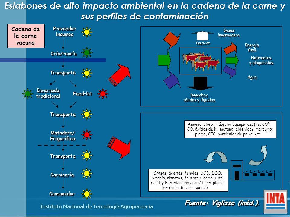 Eslabones de alto impacto ambiental en la cadena de la carne y