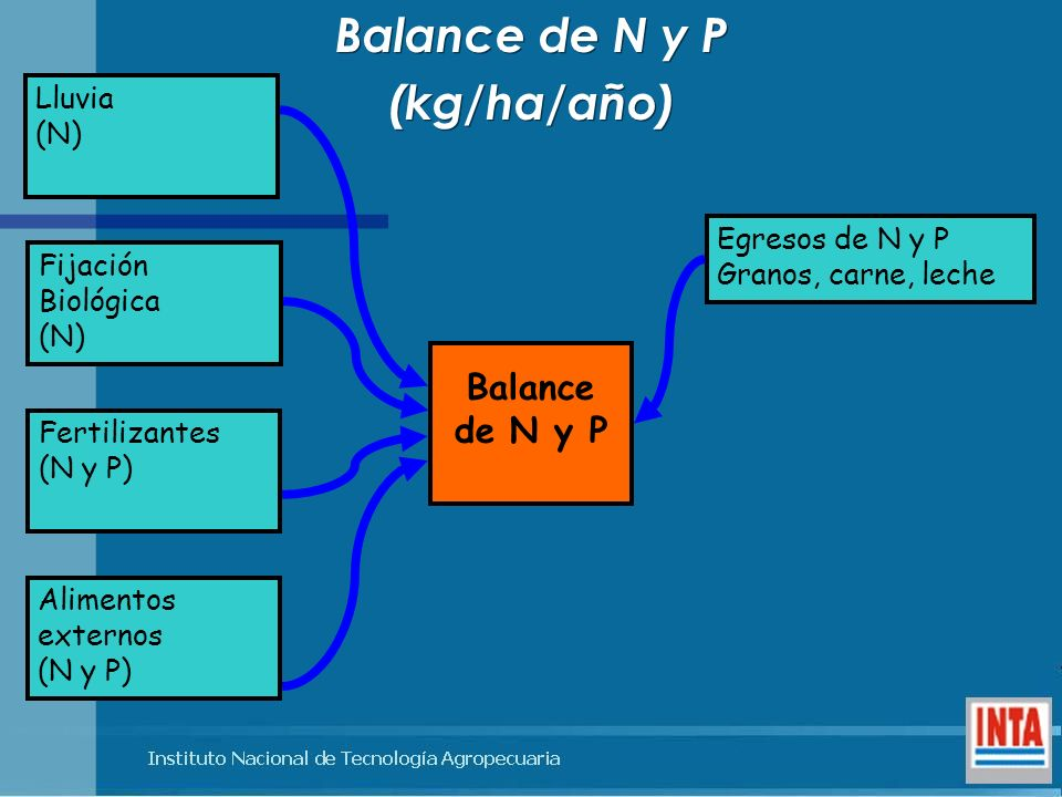 Balance de N y P (kg/ha/año)