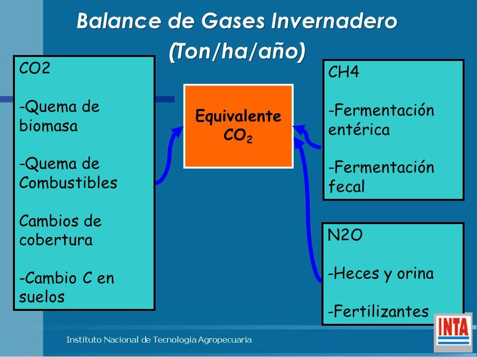 Balance de Gases Invernadero