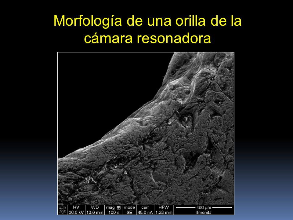 Morfología de una orilla de la cámara resonadora