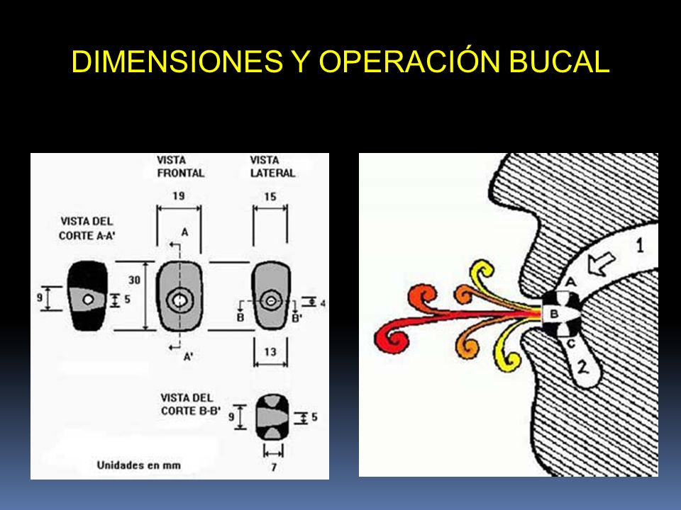 DIMENSIONES Y OPERACIÓN BUCAL