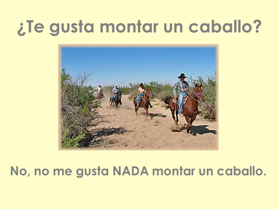 ¿Te gusta montar un caballo