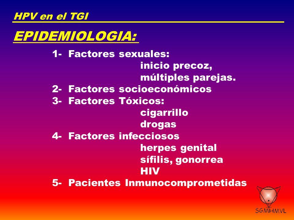 EPIDEMIOLOGIA: HPV en el TGI 1- Factores sexuales: inicio precoz,