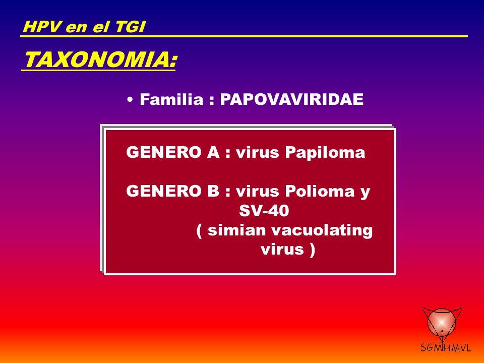 TAXONOMIA: HPV en el TGI Familia : PAPOVAVIRIDAE