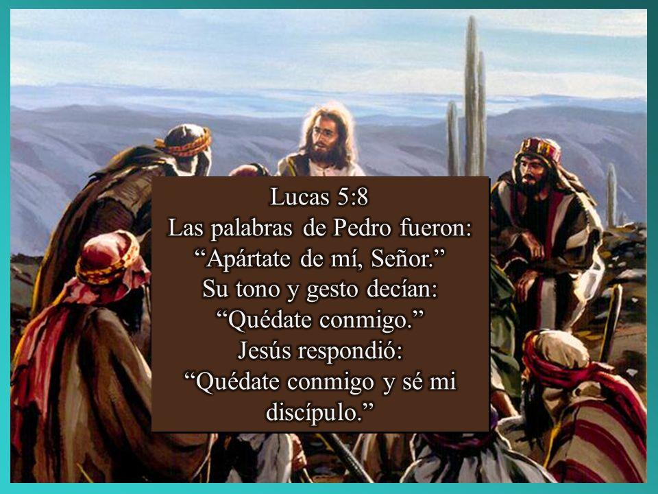 Las palabras de Pedro fueron: Apártate de mí, Señor.