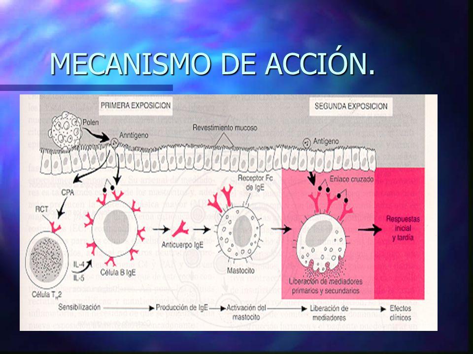MECANISMO DE ACCIÓN.