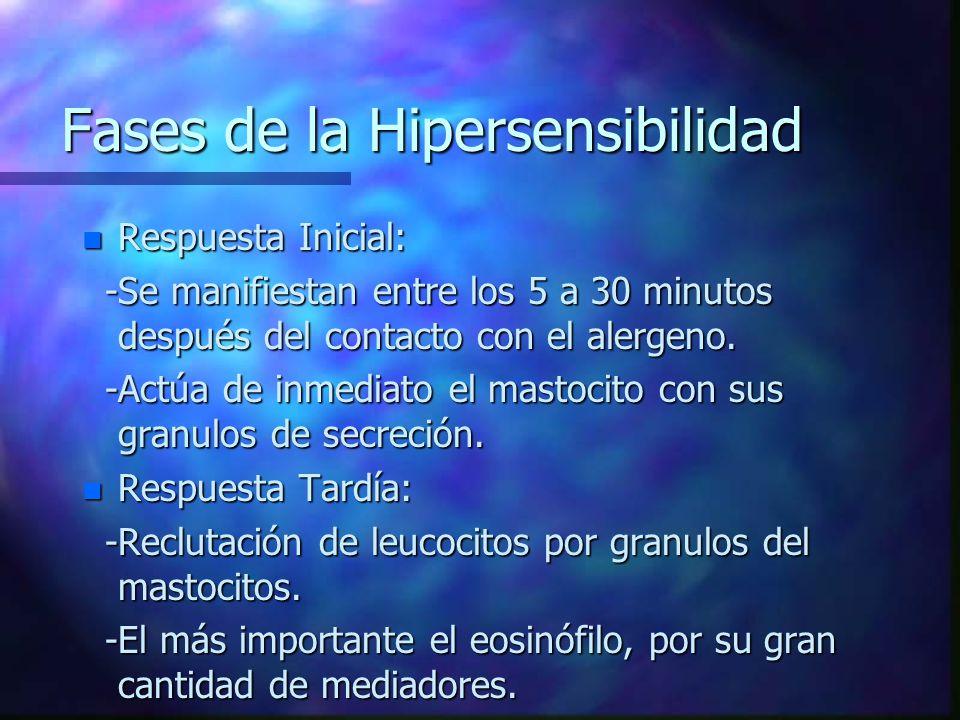 Fases de la Hipersensibilidad