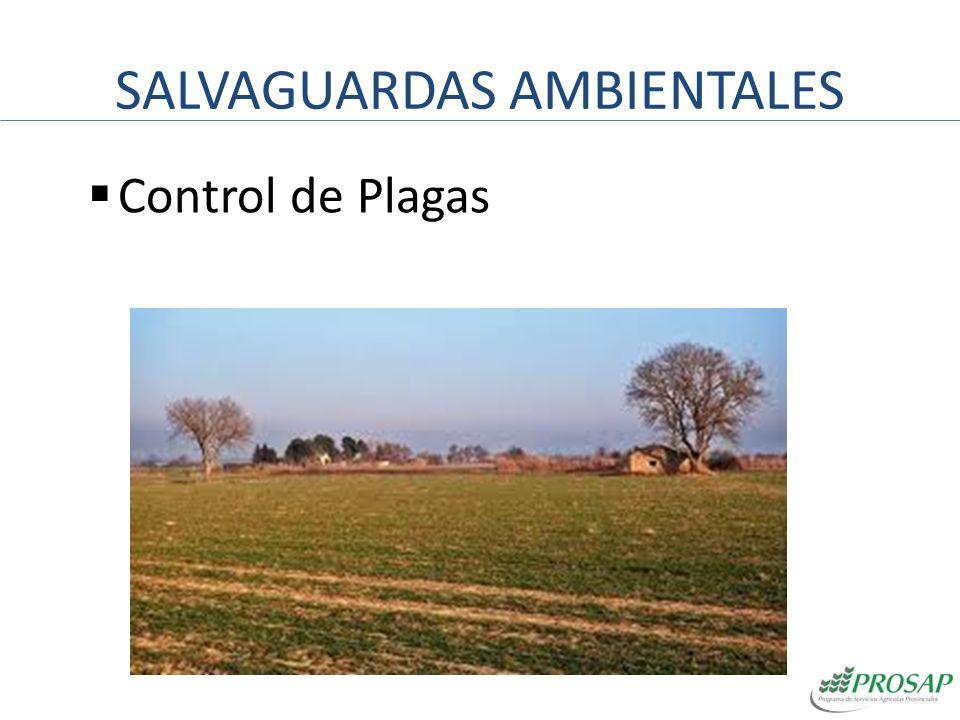 SALVAGUARDAS AMBIENTALES