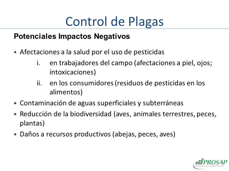 Control de Plagas Potenciales Impactos Negativos
