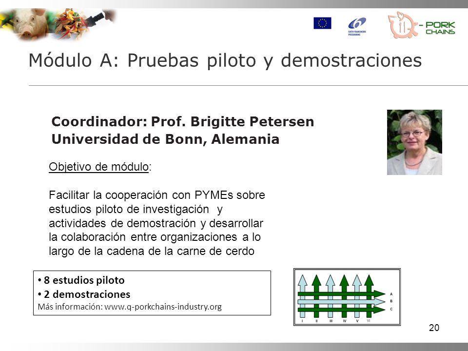Módulo A: Pruebas piloto y demostraciones