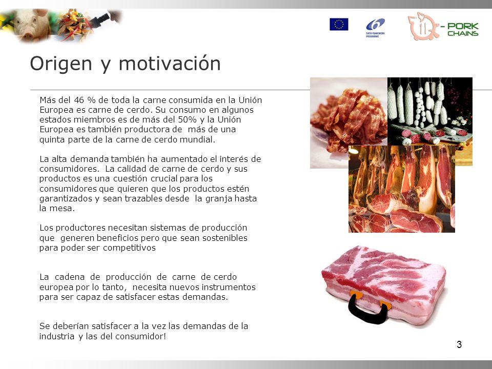 Origen y motivación