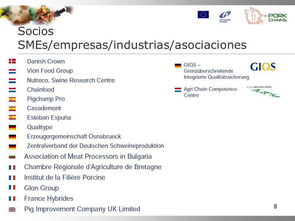 Socios SMEs/empresas/industrias/asociaciones
