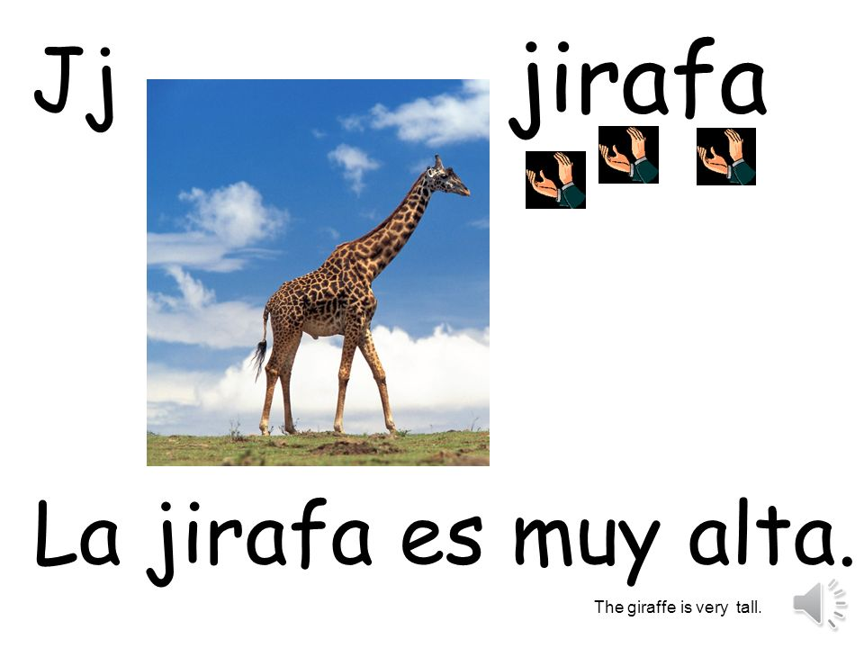 jirafa Jj La jirafa es muy alta. The giraffe is very tall.