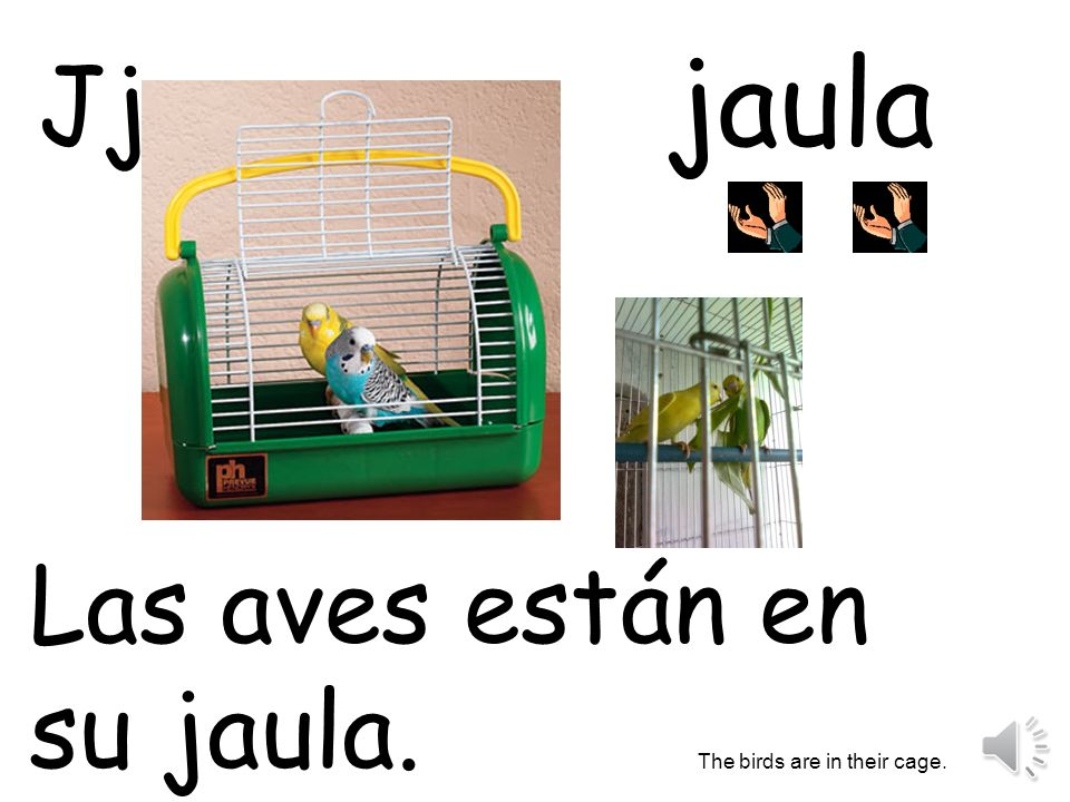 jaula Jj Las aves están en su jaula. The birds are in their cage.