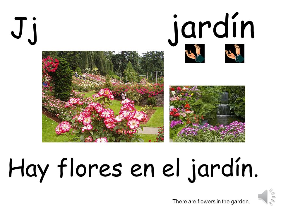 jardín Jj Hay flores en el jardín. There are flowers in the garden.