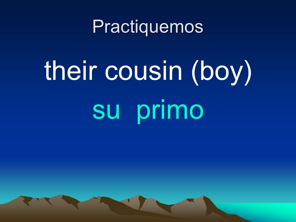 Practiquemos their cousin (boy) su primo