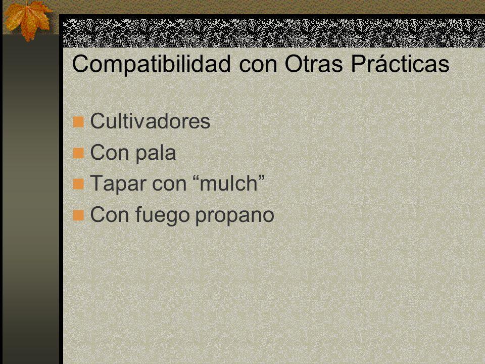 Compatibilidad con Otras Prácticas