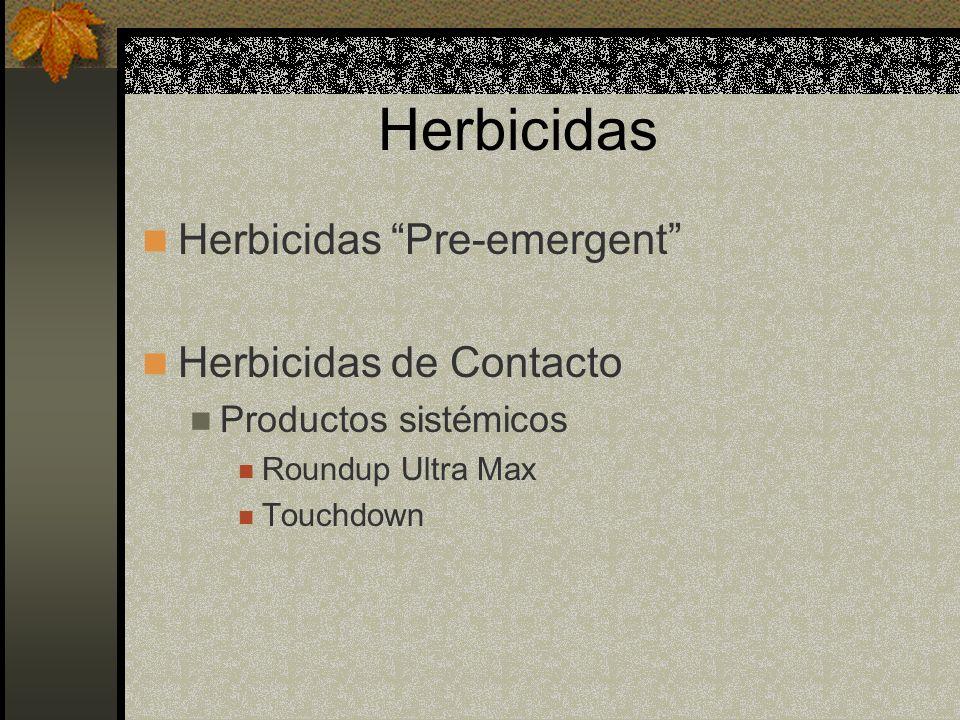 Herbicidas Herbicidas Pre-emergent Herbicidas de Contacto