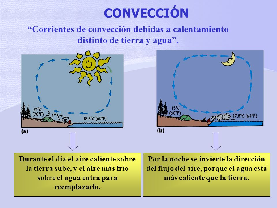 CONVECCIÓN Corrientes de convección debidas a calentamiento distinto de tierra y agua .