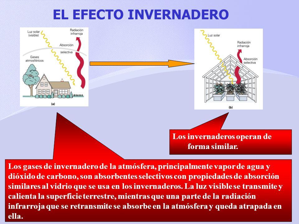 EL EFECTO INVERNADERO Los invernaderos operan de forma similar.