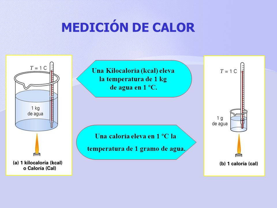 MEDICIÓN DE CALOR Una Kilocaloría (kcal) eleva la temperatura de 1 kg