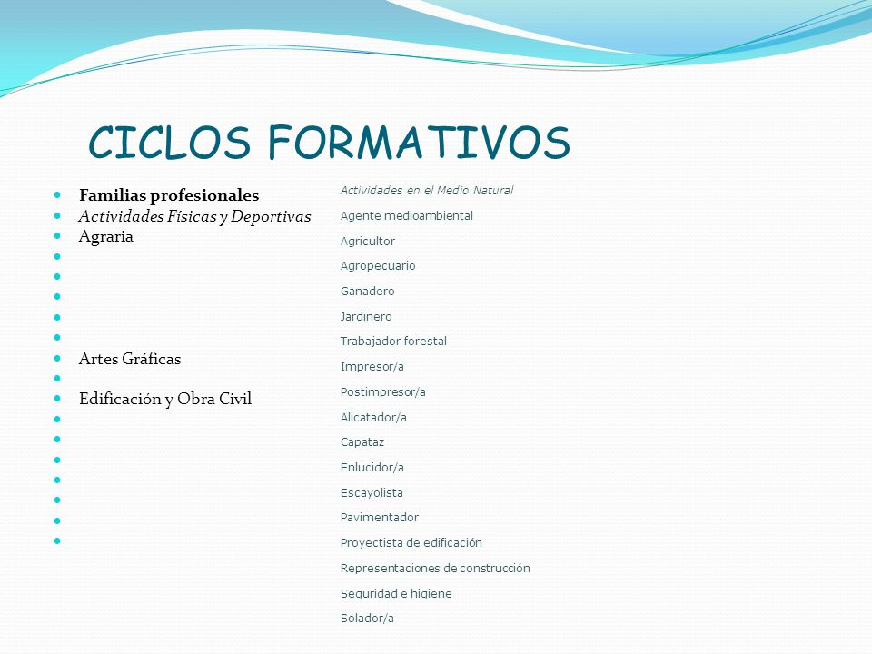 CICLOS FORMATIVOS Familias profesionales