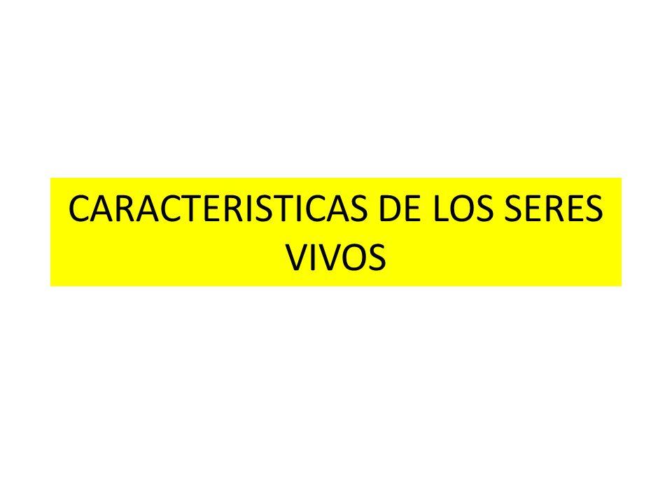 CARACTERISTICAS DE LOS SERES VIVOS