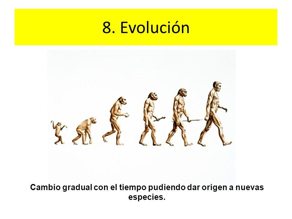 Cambio gradual con el tiempo pudiendo dar origen a nuevas especies.