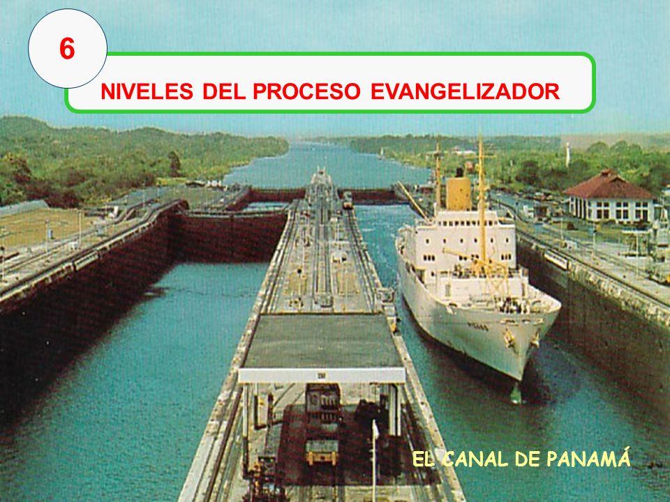 NIVELES DEL PROCESO EVANGELIZADOR
