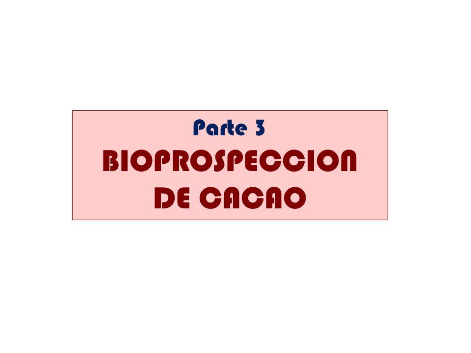 Parte 3 BIOPROSPECCION DE CACAO