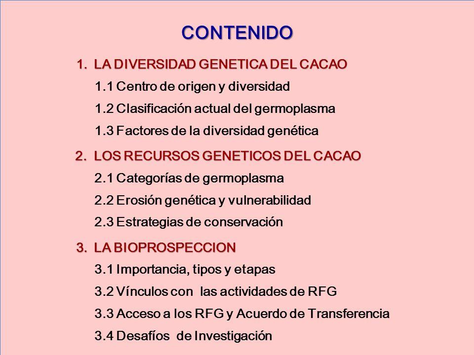 CONTENIDO LA DIVERSIDAD GENETICA DEL CACAO
