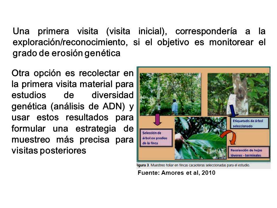 Una primera visita (visita inicial), correspondería a la exploración/reconocimiento, si el objetivo es monitorear el grado de erosión genética