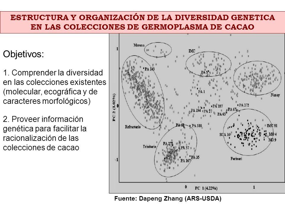Objetivos: ESTRUCTURA Y ORGANIZACIÓN DE LA DIVERSIDAD GENETICA