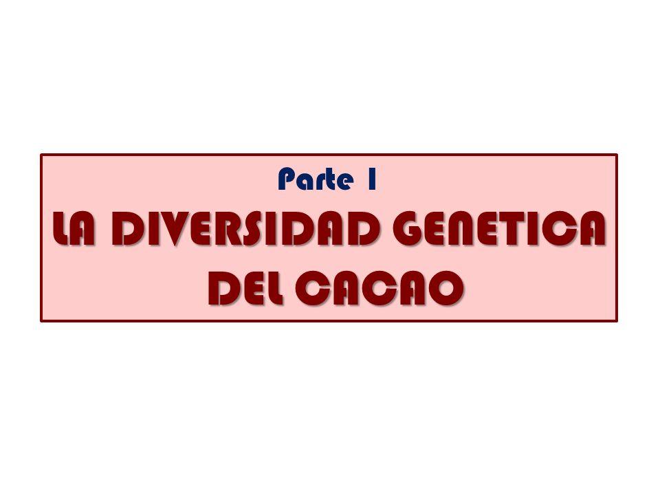 LA DIVERSIDAD GENETICA