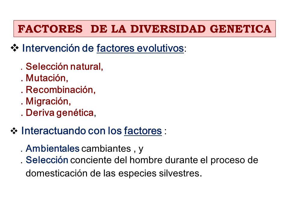 FACTORES DE LA DIVERSIDAD GENETICA