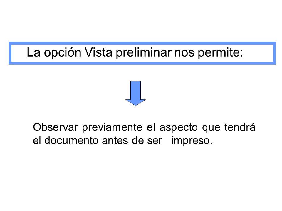 La opción Vista preliminar nos permite: