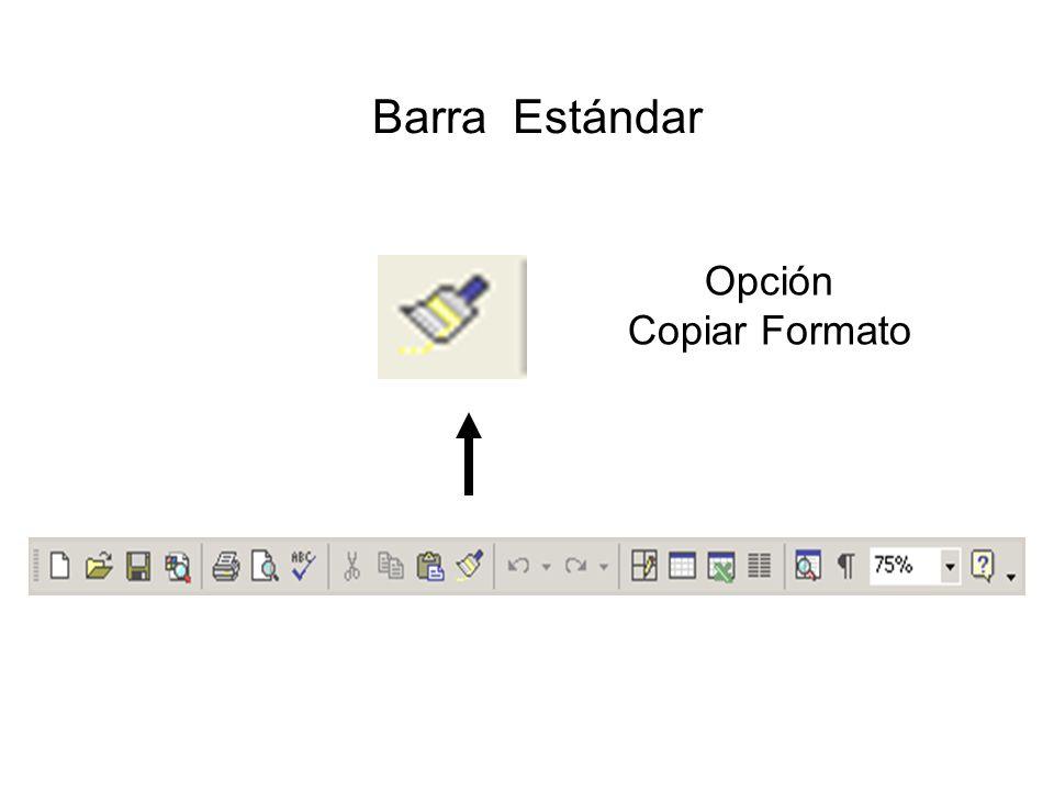 Barra Estándar Opción Copiar Formato