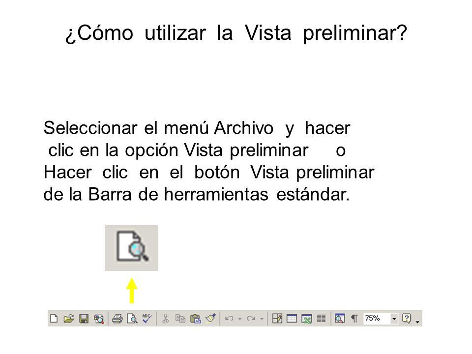 ¿Cómo utilizar la Vista preliminar